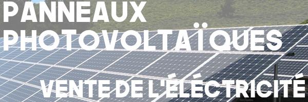 panneaux photovoltaïques vente