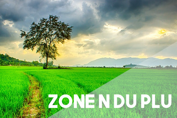 zone n plu